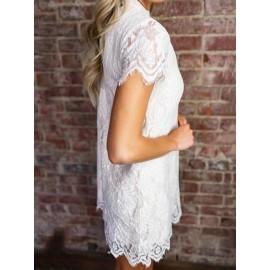 V Cut Neck Hollow Plain Women's Lace Dress